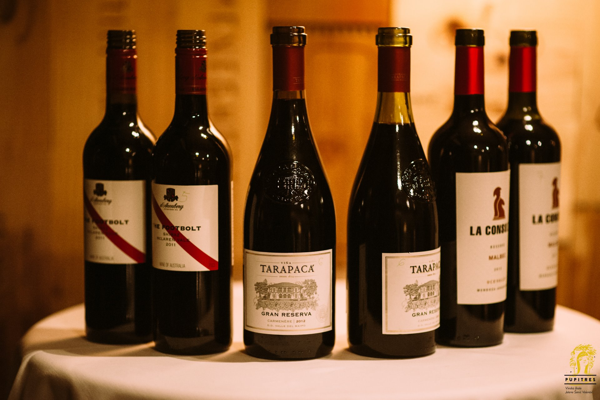 Argentinska vina