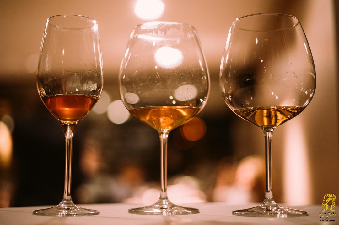 upoznajmo se s vinima gruzije